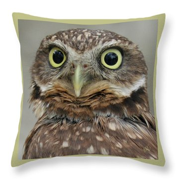 Portrait Of Burrowing Owl Throw Pillow by Ben and Raisa Gertsberg