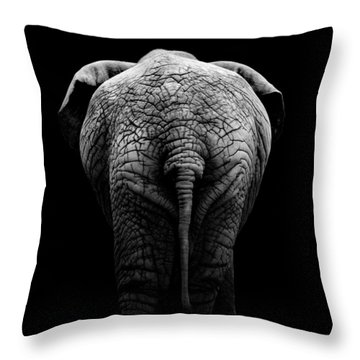 Portrait Of Elephant In Black And White II Throw Pillow