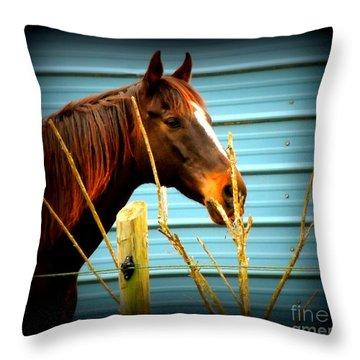 Portrait Of Niijjii Throw Pillow