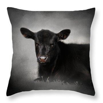 Portrait Of The Black Angus Calf Throw Pillow