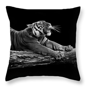 Portrait Of Tiger In Black And White Throw Pillow