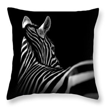 Portrait Of Zebra In Black And White II Throw Pillow by Lukas Holas