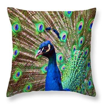 Portrait Peacock Throw Pillow