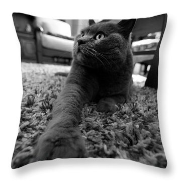 Throw Pillow featuring the photograph Posing by Laura Melis