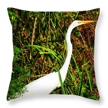 Posing Throw Pillow
