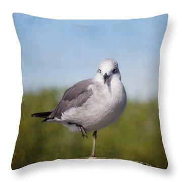 Posing Seagull Throw Pillow by Kim Hojnacki