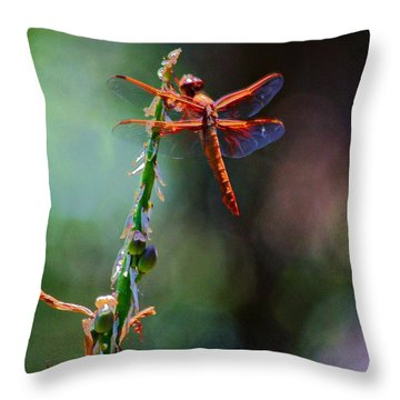Throw Pillow featuring the photograph Positive Forces by Patrick Witz