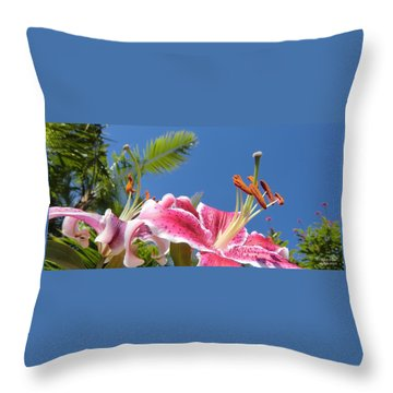 Possibilities 3  Throw Pillow