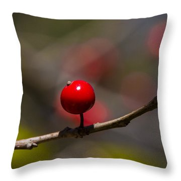 Possumhaw Fruit Abstraction Throw Pillow