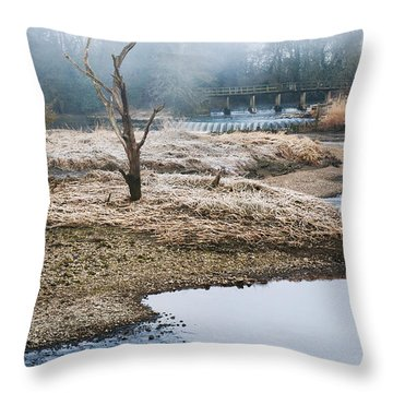 Throw Pillow featuring the photograph Post Apocalyptic Landscape by Trevor Chriss