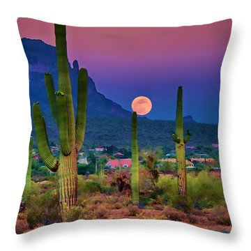 Postcard Perfect Arizona Throw Pillow