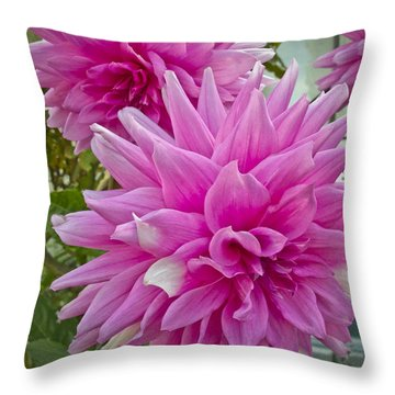 Postcard Perfect Throw Pillow