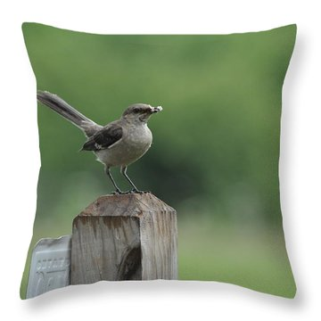 Posted Throw Pillow by Eric Liller