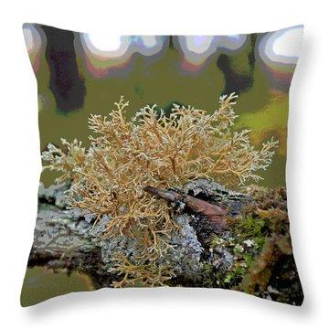 Posterized Antler Lichen Throw Pillow