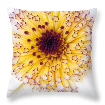 Pot Marigold Citrus Smoothies Throw Pillow