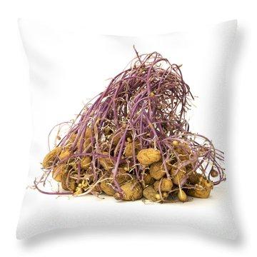 Potato Throw Pillow by Bernard Jaubert