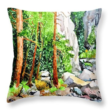 Poudre Canyon Beauty Throw Pillow by Tom Riggs
