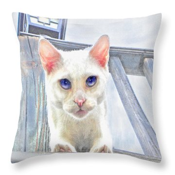 Throw Pillow featuring the digital art Pounce by Jane Schnetlage