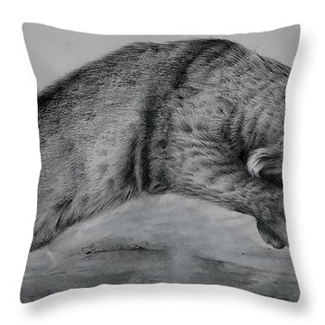 Pounce Throw Pillow by Jean Cormier