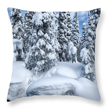 Powder Throw Pillow by Ted Raynor