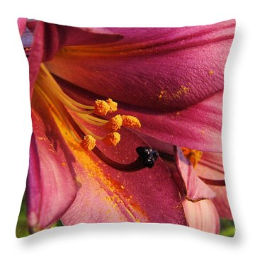 Powdered Pollen  Throw Pillow by Jeff Swan