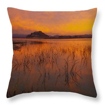 Powell Sunrise 1 Throw Pillow