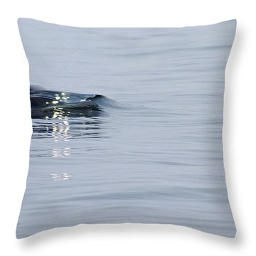 Throw Pillow featuring the photograph Power In Motion by Marilyn Wilson