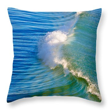 Power In Peace Throw Pillow by Edgar Laureano
