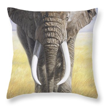 Power Of Nature Throw Pillow