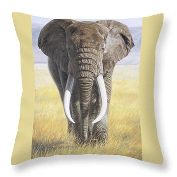 Power Of Nature Throw Pillow