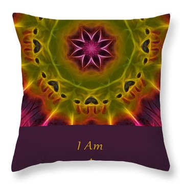 Throw Pillow featuring the photograph Powerful Creator by Beth Sawickie