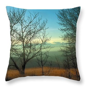 Prairie Autumn 2 Throw Pillow