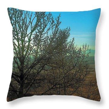 Prairie Autumn 7 Throw Pillow by Terry Reynoldson