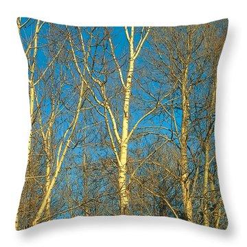 Prairie Autumn 9 Throw Pillow by Terry Reynoldson