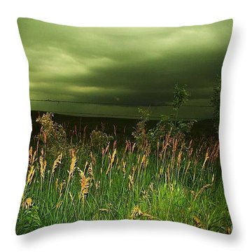 Prairie Clouds Throw Pillow