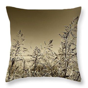 Prairie Grass Throw Pillow by Ellen O'Reilly