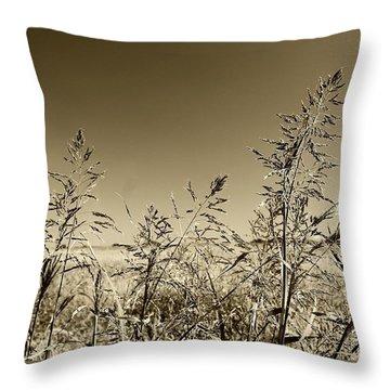 Throw Pillow featuring the photograph Prairie Grass by Ellen O'Reilly