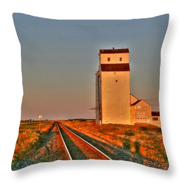 Prairie Meadows Throw Pillow