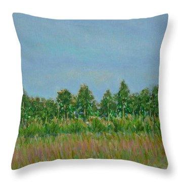Prairie Morning Light Throw Pillow