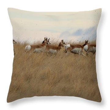 Prairie Pronghorns Throw Pillow