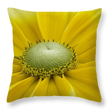 Prairie Sun Throw Pillow