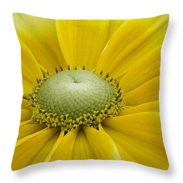 Prairie Sun Throw Pillow