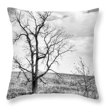 Prairie Tree In B And W Throw Pillow