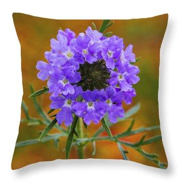 Prairie Verbena In A Firewheel Colony Throw Pillow