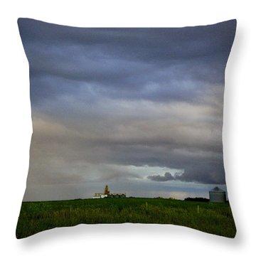 Prairie View Throw Pillow