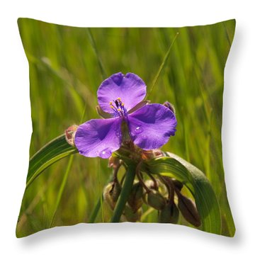Prairie Wild Flower Throw Pillow
