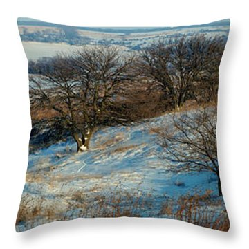 Prairie Winter Throw Pillow