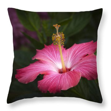 Throw Pillow featuring the photograph Praise Be To God by Penny Lisowski