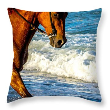 Prancing In The Sea Throw Pillow by Shannon Harrington