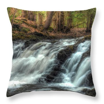 Pratt Brook Falls Throw Pillow